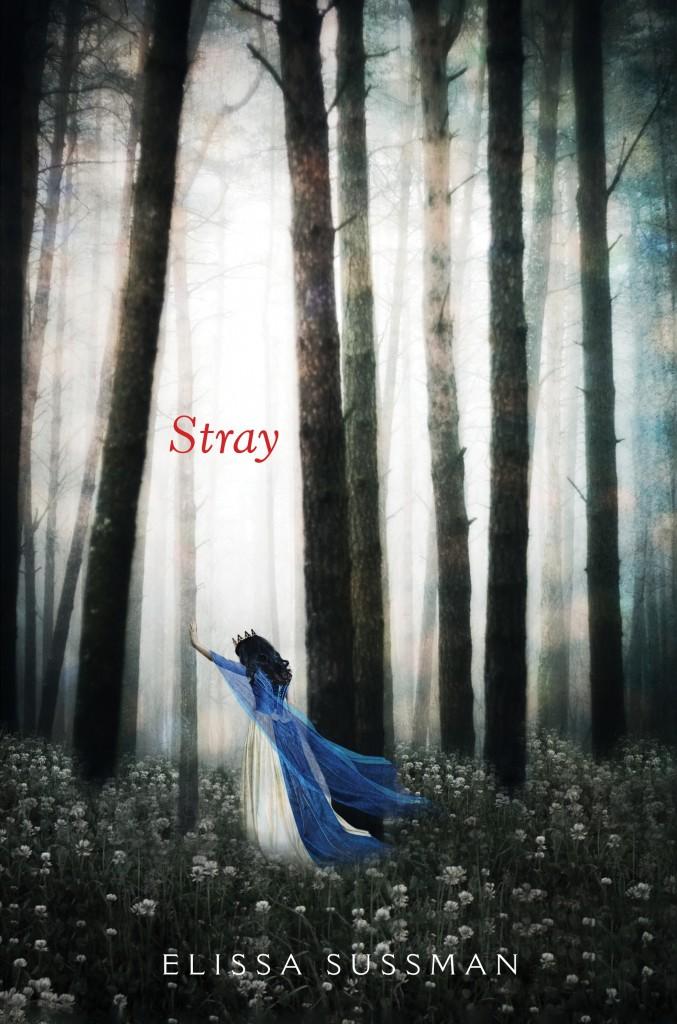 Stray HC C