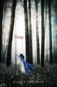 stray_cover_350